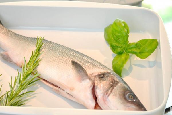 COOK and ENJOY Blog Fisch und Meeresfrüchte aus Wildfang