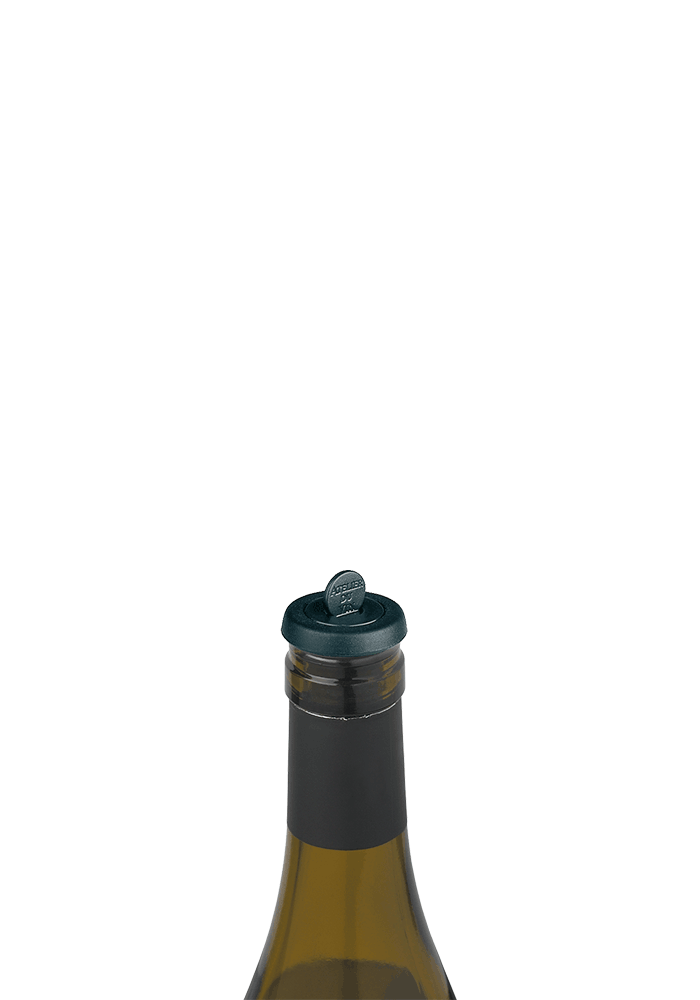 COOK and ENJOY Shop Weinpumpe Gard'Vin mit zwei On/Off-Kunststoff-Verschlüssen
